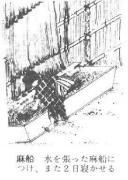 Japan & Industrial Hemp. Asafune (Hemp Boat)