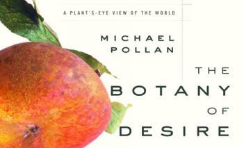 Michael polin, marijuana, documentary