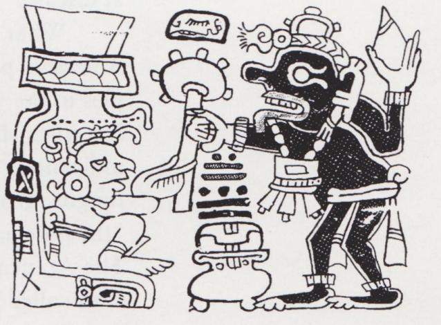Mayan Mushroom?
