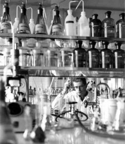 Sandoz Laboratory