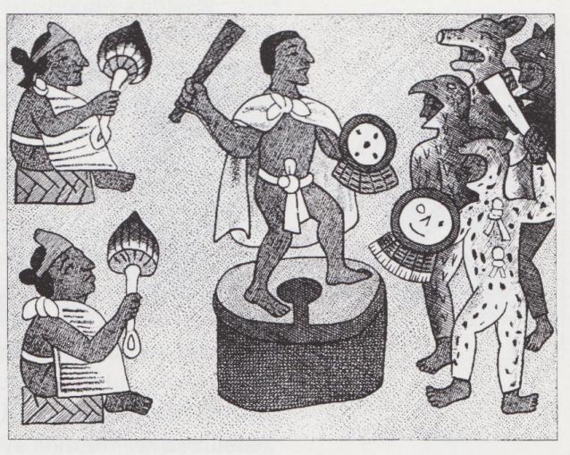 Aztec Mushroom Ceremony?