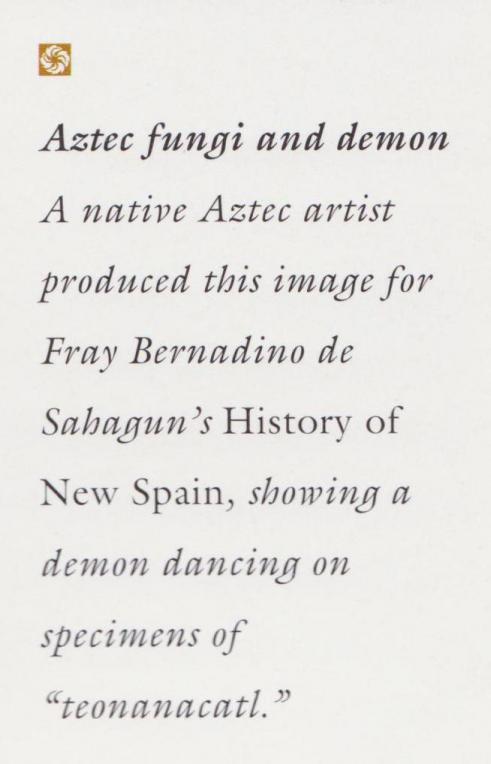Aztec Fungi and Demon Description
