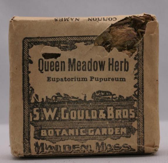 GouldSWQueenMeadow