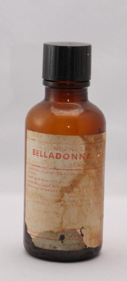 Belladonna2