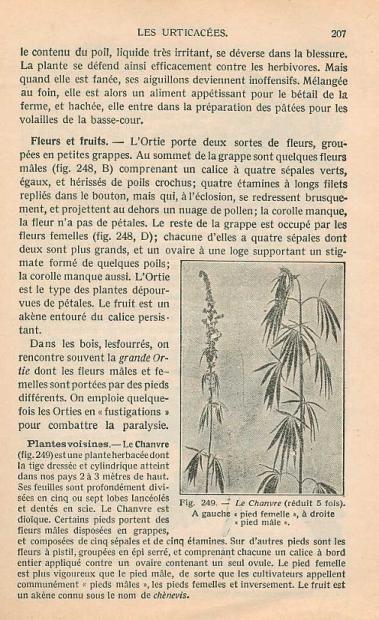 Page 207- Zoologie et Botanique by V. Boulet (1924)